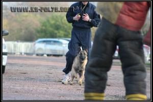 Hatch(8)---Patrouille---2010---