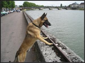 Spike---Patrouille---2007