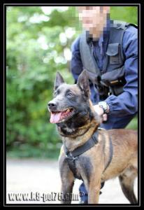 Airton(4)---Patrouille---28.05.2011---