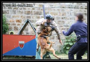 Cid(10)---Patrouille---28.05.2011---