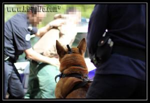 Cid(12)---Patrouille---28.05.2011---