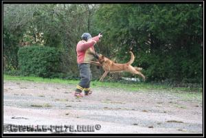 Cid(6)---Patrouille---2010---