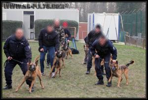 GroupePatrouille(4)---31.01.2011---