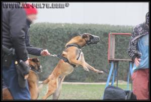 GroupePatrouille2-31.01.2011-