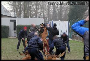 GroupePatrouille3-31.01.2011-